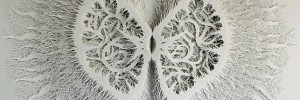 Rogan Brown