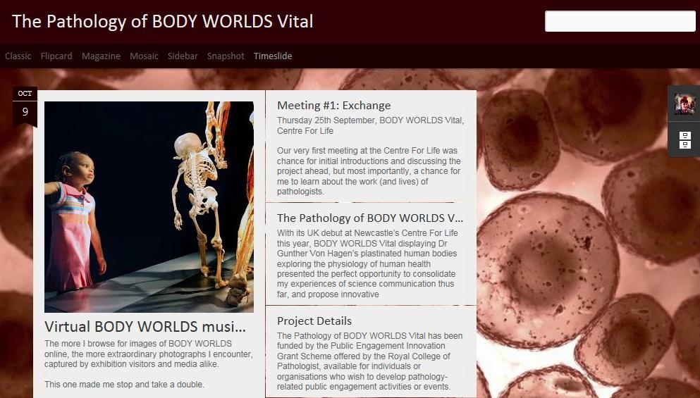 The Pathology of BODY WORLDS Vital_Collaborative Project_November 2014